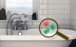 Не дать плесени шанса: рейтинг лучших средств борьбы с плесневым грибком в ванной комнате