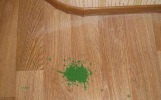Зелёнка – благо, только не на полу — удаляем «бриллиантовую зелень» с линолеума
