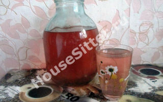 Напиток витаминный летний