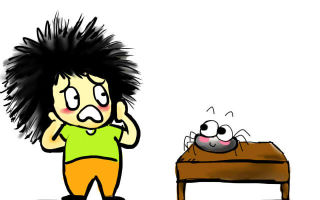 Не так страшен паук, как неприятен — выселяем непрошеного гостя