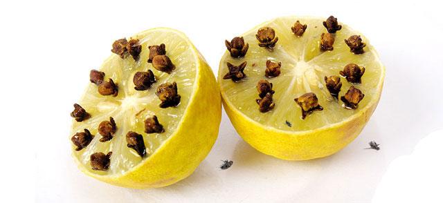 Лимон и гвоздики
