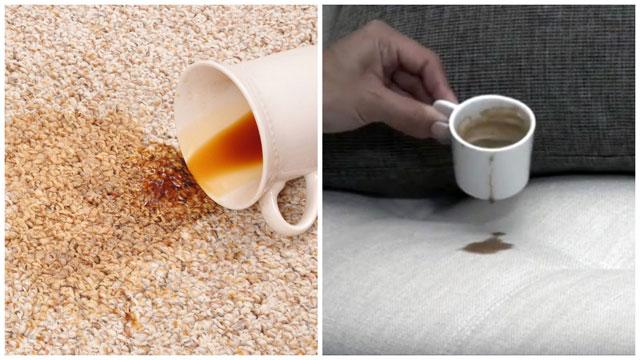 Пролили чашку кофе на ковёр и диван