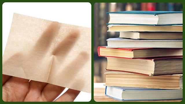 Промокашка и стопка книг