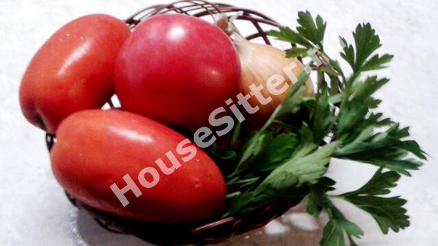 Вымытые овощи